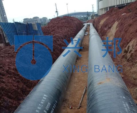 广西南宁区域集中供能项目