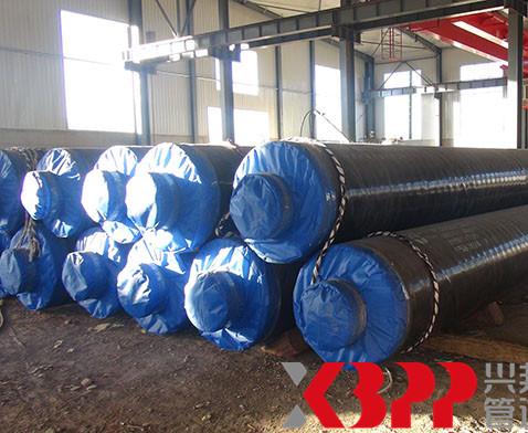 俄罗斯蒸汽输送项目